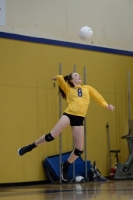 Gallery: Volleyball Todd Beamer @ Decatur